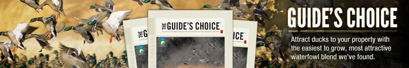 Guide's Choice