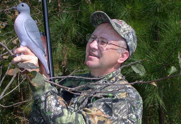 setting-up-dove-decoy