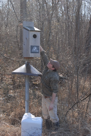 Four keys to successful wood duck boxes mossy oak with the proper design and layout man made wood duck nesting structures can be a key asset to help preserve and enhance wood duck populations and habitat publicscrutiny Choice Image
