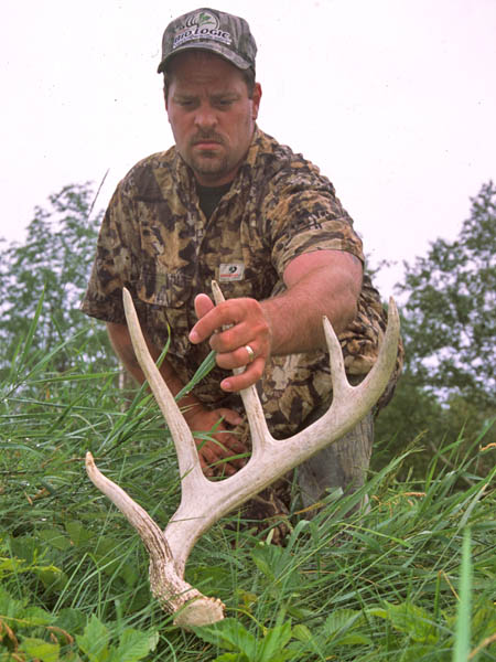 Related to deer antler sheds for sale | eBay - Electronics, Cars