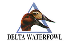 Get Involved - Waterfowl Evolution